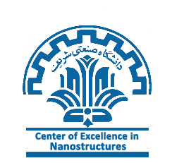 Center of Excellence in Nanostructures