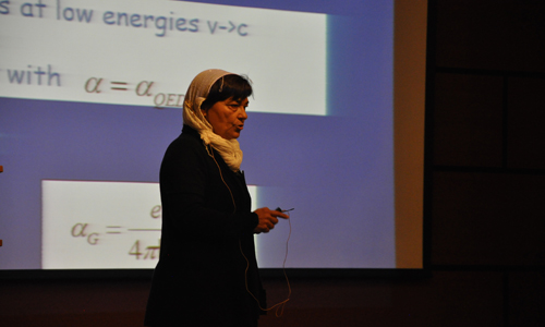 Prof. Maria A. H. Vozmediano, Keynote Speaker of ICNS5